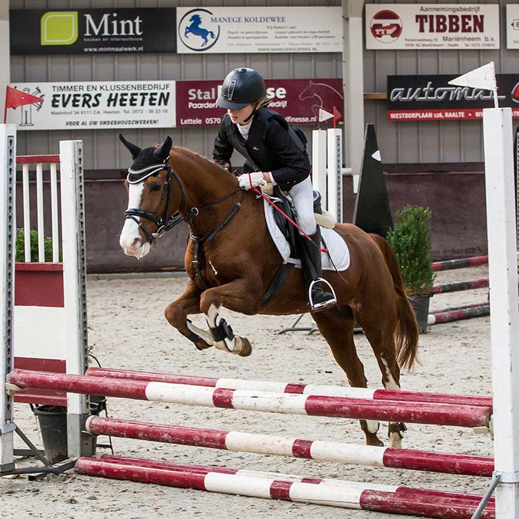 manege-heeten-telt-weer-mee-in-paardensportwereld